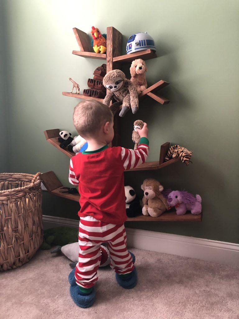 Luke looking at tree bookshelf
