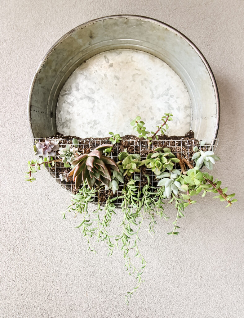 straight-on shot of a vertical wall hanging galvanized metall planter