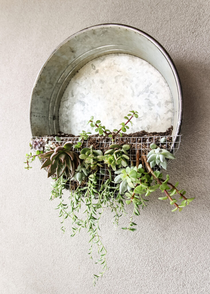 galvanized metal tray upcycled into a wall hanging planter