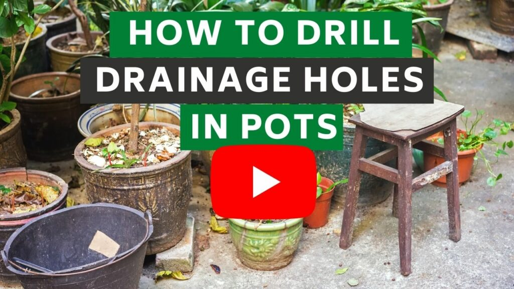 drainage holes in pots youtube Thumbnail BLOG
