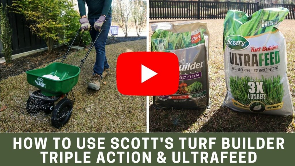 How to use Scotts Turf Builder Triple Action Southern & Ultrafeed youtube thumbnail blog