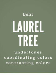 behr laurel tree