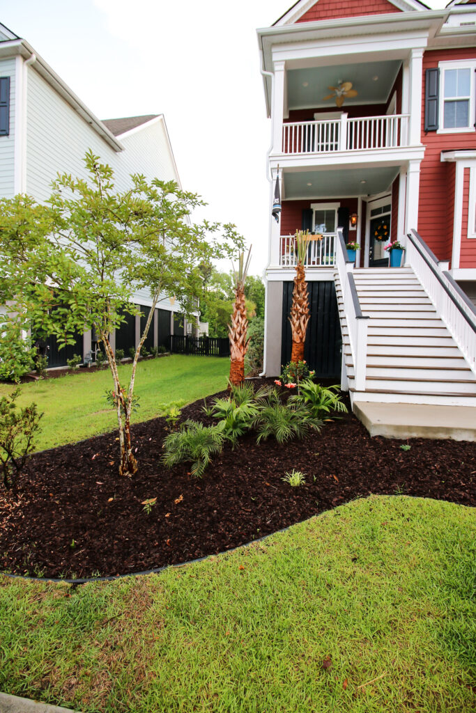 Tropical Front Yard Makeover - Charleston Crafted