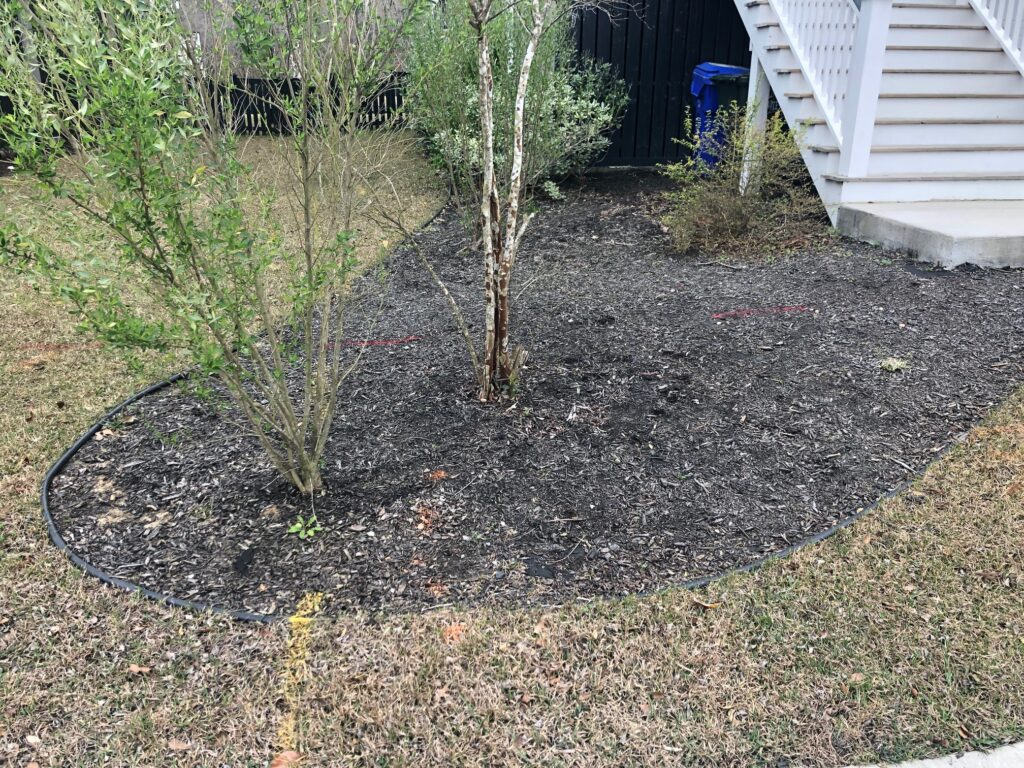Utility line markings in yard