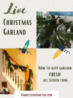 Live christmas garland tips and tricks