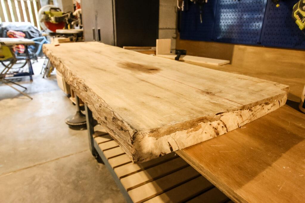 Slab of maple wood for floating shelves
