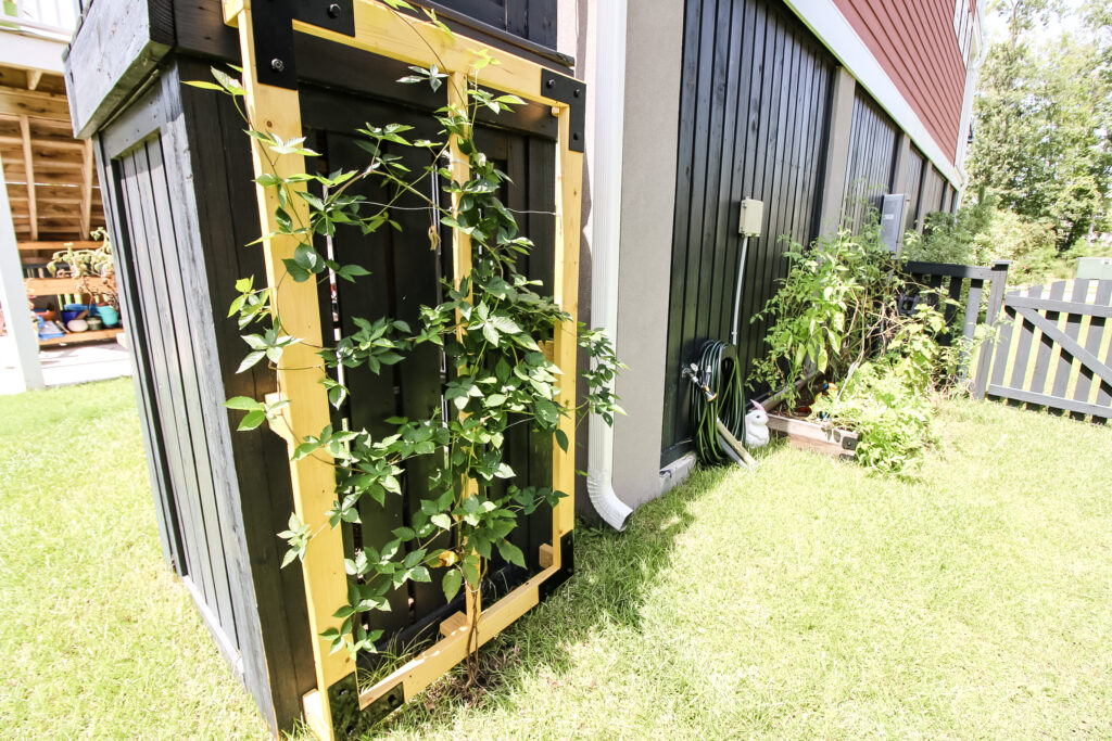 Trailing vine trellis with garden