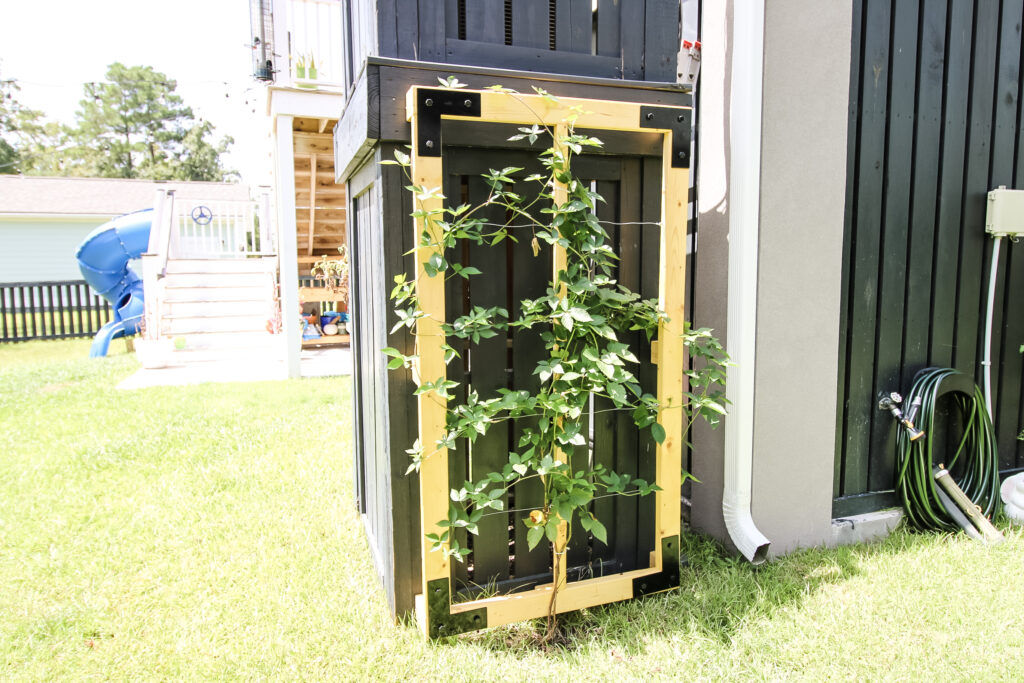 How to build a wooden wire trellis - Charleston Crafted
