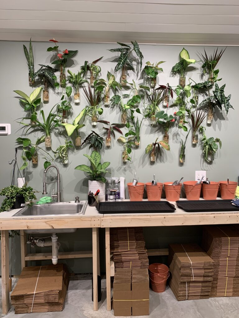 planting section of plant house charleston